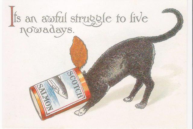 An_awful_struggle