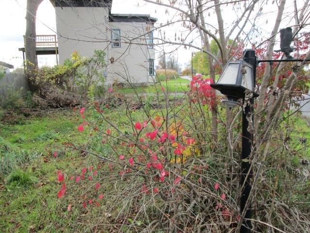 A sidewalk lamp, no longer needed.