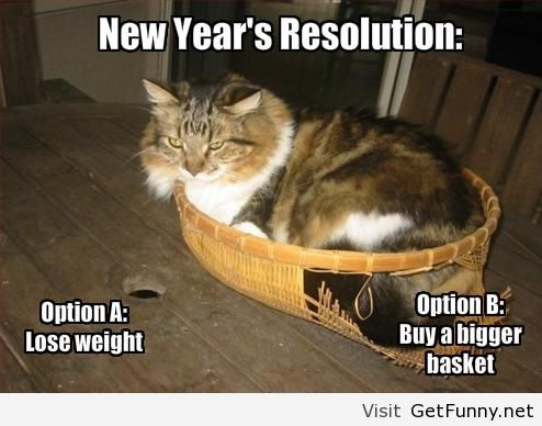 New-year-resolution-funny