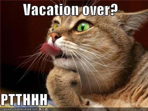 Assalaamo-3laekum wrwb   Vacation Is Over Back To Work