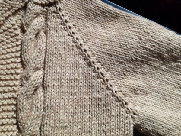 Detail of sweater showing cable and raglan sleeve,