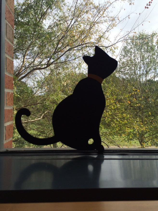Sitting off to my right, this kitty is ready to pounce on an unwary bird!