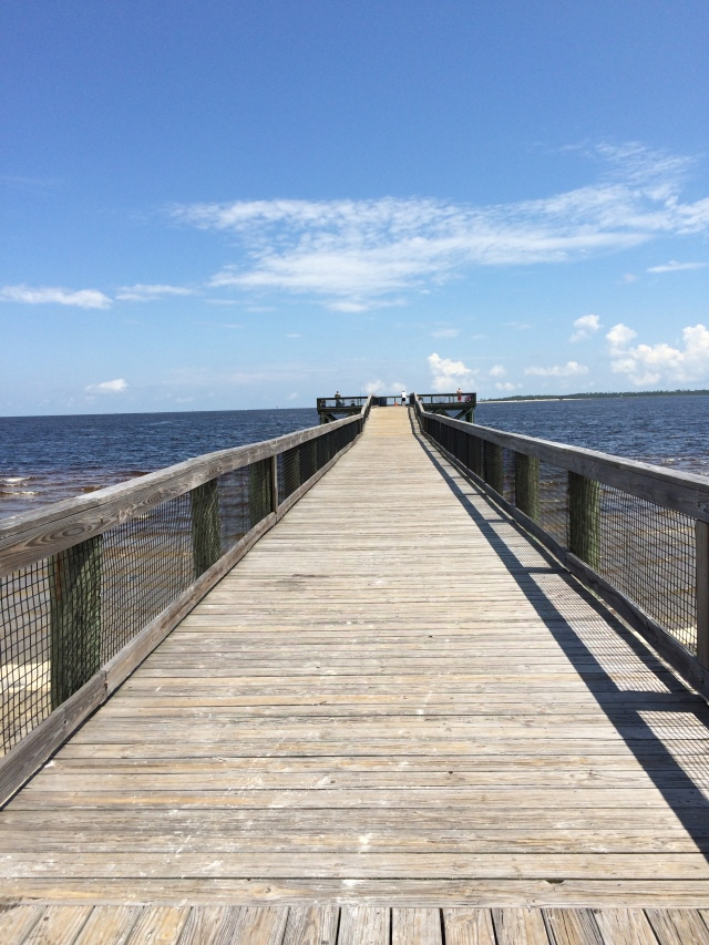 A view of the boardwalk which gives me a sense of liminality.