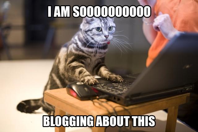 blogging-meme